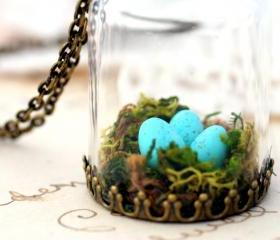 Moss terrarium pendant, birds nest necklace, robins nest necklace, terrarium jewelry