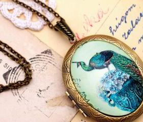 Peacock locket pendant, bird locket necklace, blue green necklace, peacock feather pendant, glass picture locket, long bronze locket